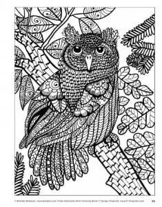 сова раскраска (3)