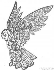сова раскраска (303)