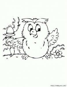 сова раскраска (307)