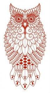 сова раскраска (311)