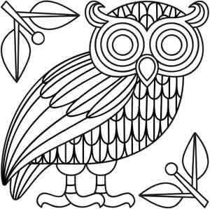 сова раскраска (312)