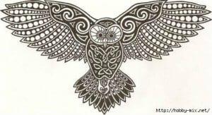 сова раскраска (330)