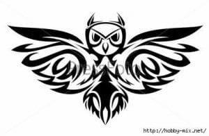 сова раскраска (346)