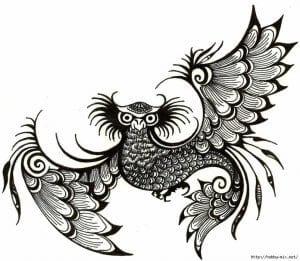 сова раскраска (347)