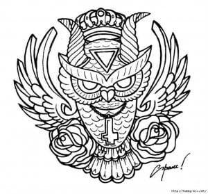 сова раскраска (360)