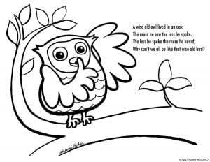 сова раскраска (372)