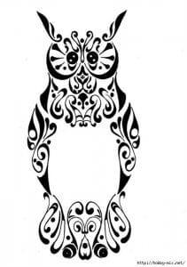 сова раскраска (380)