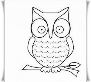 сова раскраска (403)