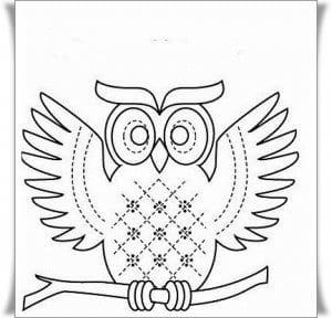 сова раскраска (408)