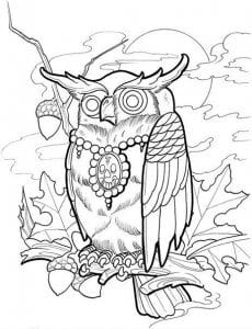сова раскраска (431)