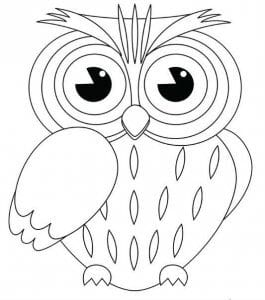 сова раскраска (434)