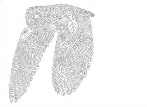 сова раскраска (442)