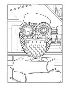 сова раскраска (443)