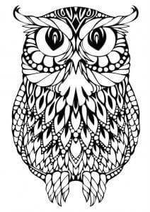 сова раскраска (457)