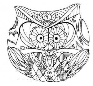 сова раскраска (459)