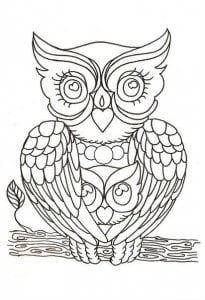 сова раскраска (460)