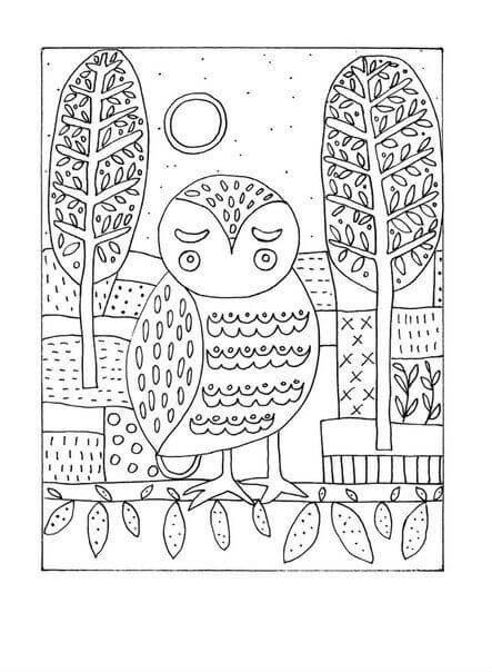 сова раскраска (461)