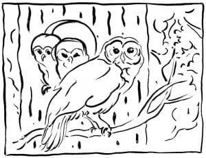 сова раскраска (465)