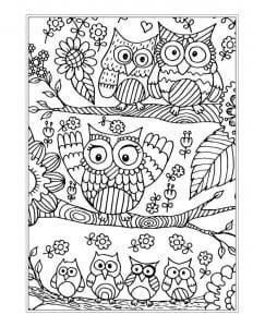 сова раскраска (470)