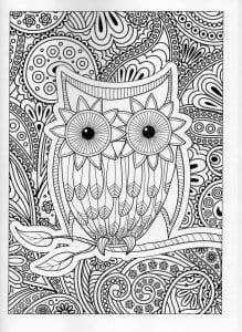 сова раскраска (479)