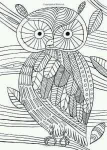 сова раскраска (481)
