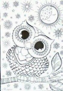 сова раскраска (505)