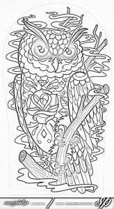 сова раскраска (519)