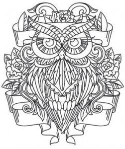 сова раскраска (520)