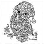 сова раскраска (522)