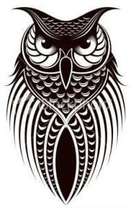 сова раскраска (537)