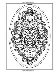 сова раскраска (552)
