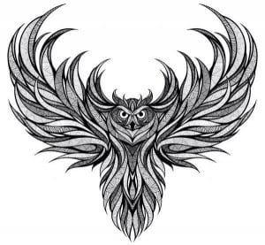 сова раскраска (558)