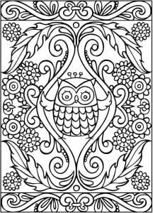 сова раскраска (559)
