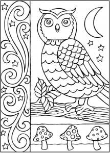 сова раскраска (561)