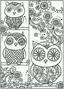 сова раскраска (563)