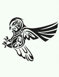 сова раскраска (573)