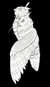 сова раскраска (591)