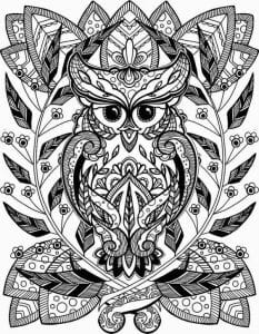 сова раскраска (602)