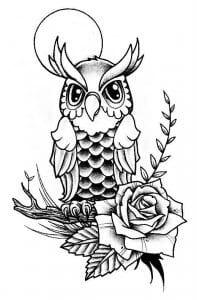 сова раскраска (608)