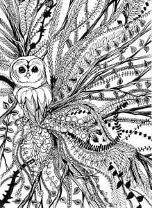 сова раскраска (610)