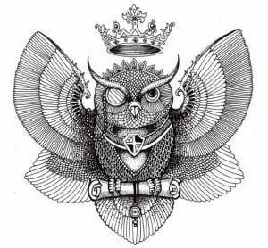 сова раскраска (611)