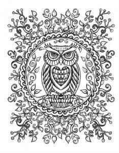 сова раскраска (613)