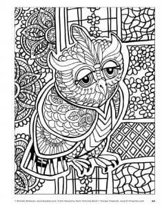 сова раскраска (614)
