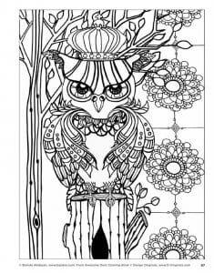 сова раскраска (617)