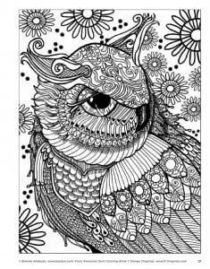 сова раскраска (619)
