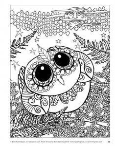 сова раскраска (620)