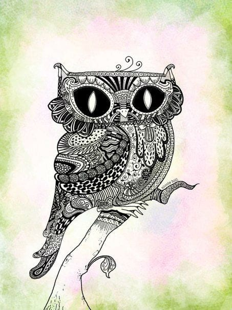 сова раскраска (64)