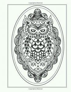 сова раскраска (74)