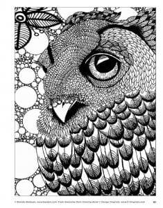 сова раскраска (8)