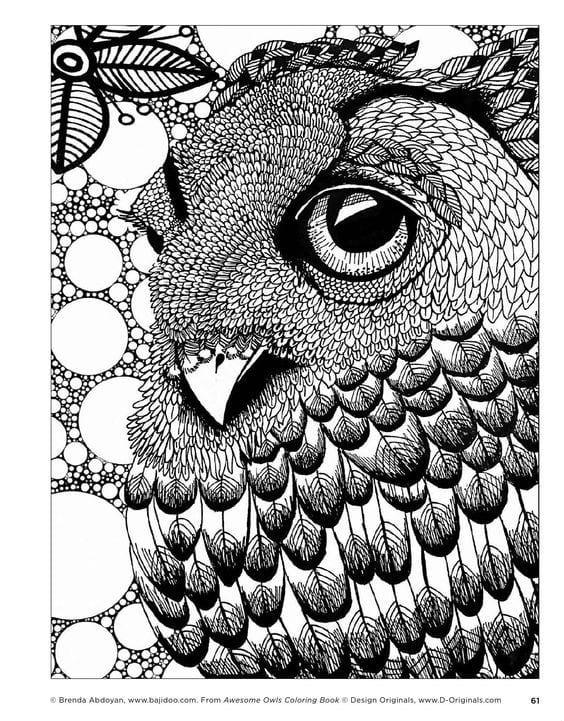 сова раскраска (8) - Рисовака